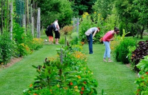 Jardin-bouichere-533x400